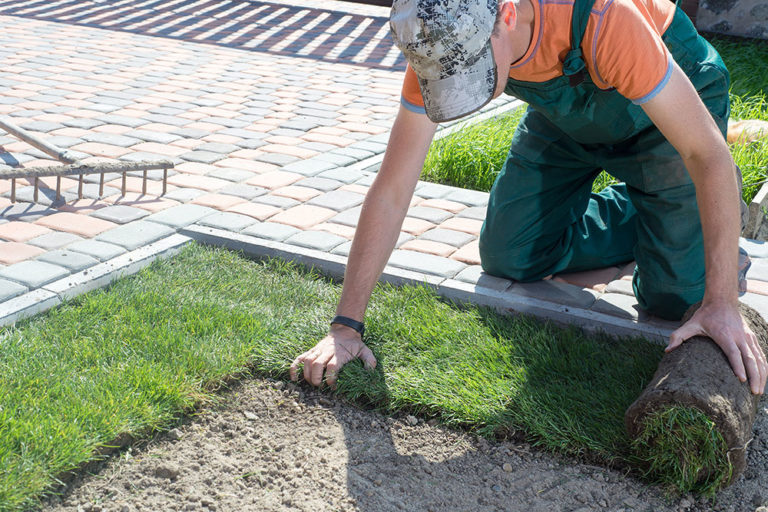 Last step of how to Lay Sod - Sanbornville, Carroll