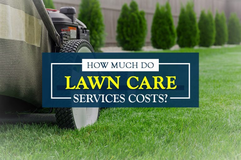 How Much Do Lawn Care Service Cost